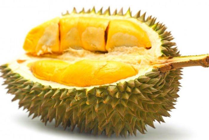 Sầu Riêng 6Ri